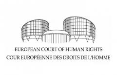 logo-TEDH-Estrasburgo-Tribunal-Europeo-Derechos-Humanos.jpg